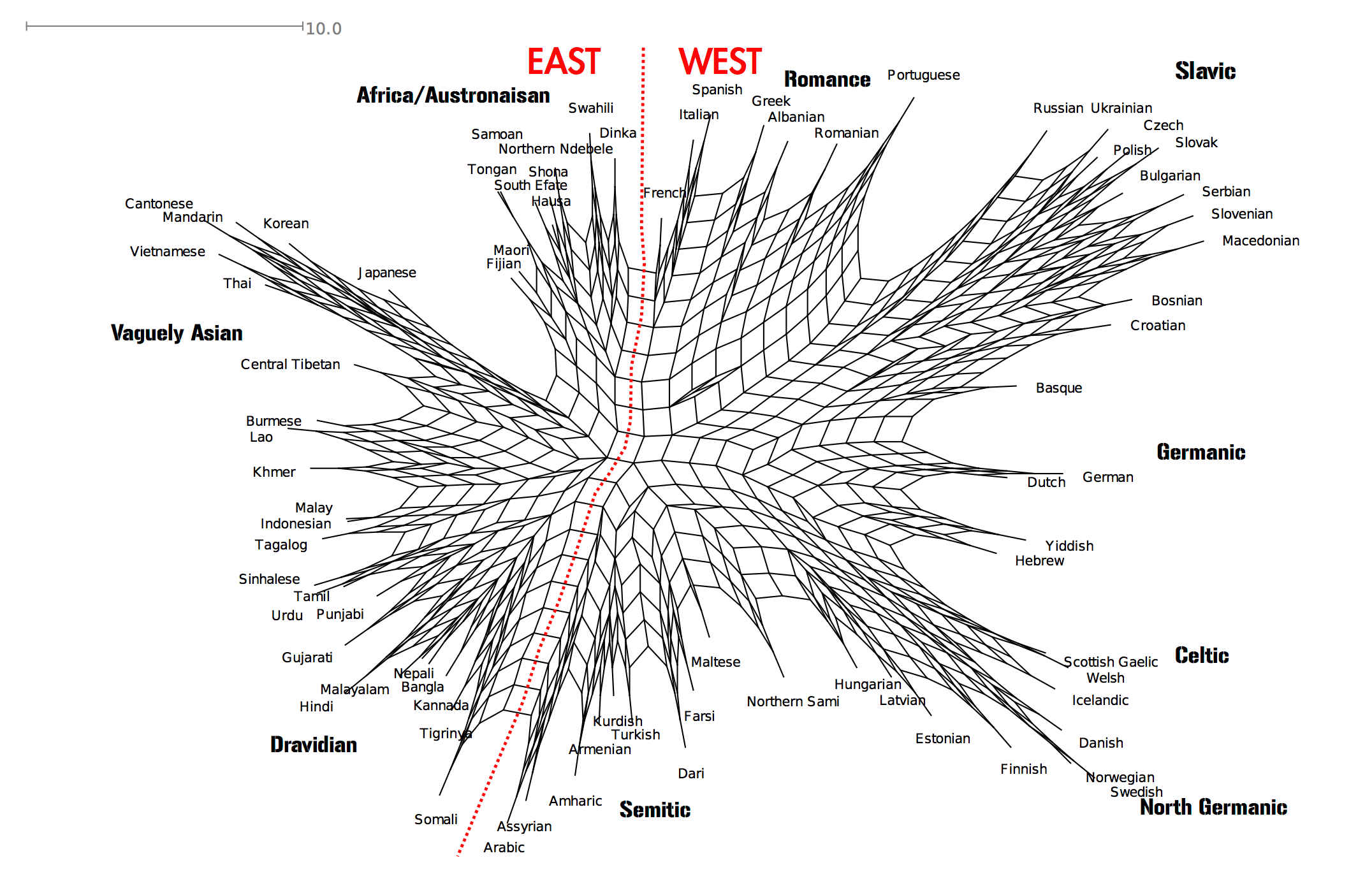 Web showing connections between different languages.