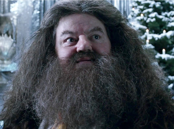 4.    Hagrid, looking his charmingly simple self.