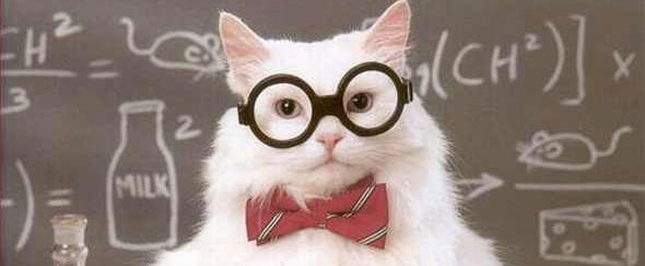 Picture of science cat, complete with glasses, in front of blackboard.