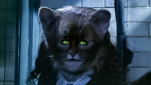 Hermione partially transformed into a cat